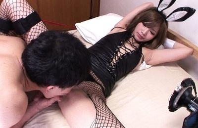Miku hasegawa. Miku Hasegawa Asian bunny has love box licked